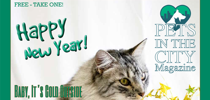 January 2018 Pets in the City Magazine